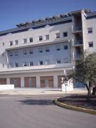 Alquiler de Local Comercial - Sevilla - Bormujos - 200 €