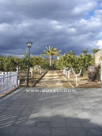 House for rent - Sevilla - Espartinas - 125 €